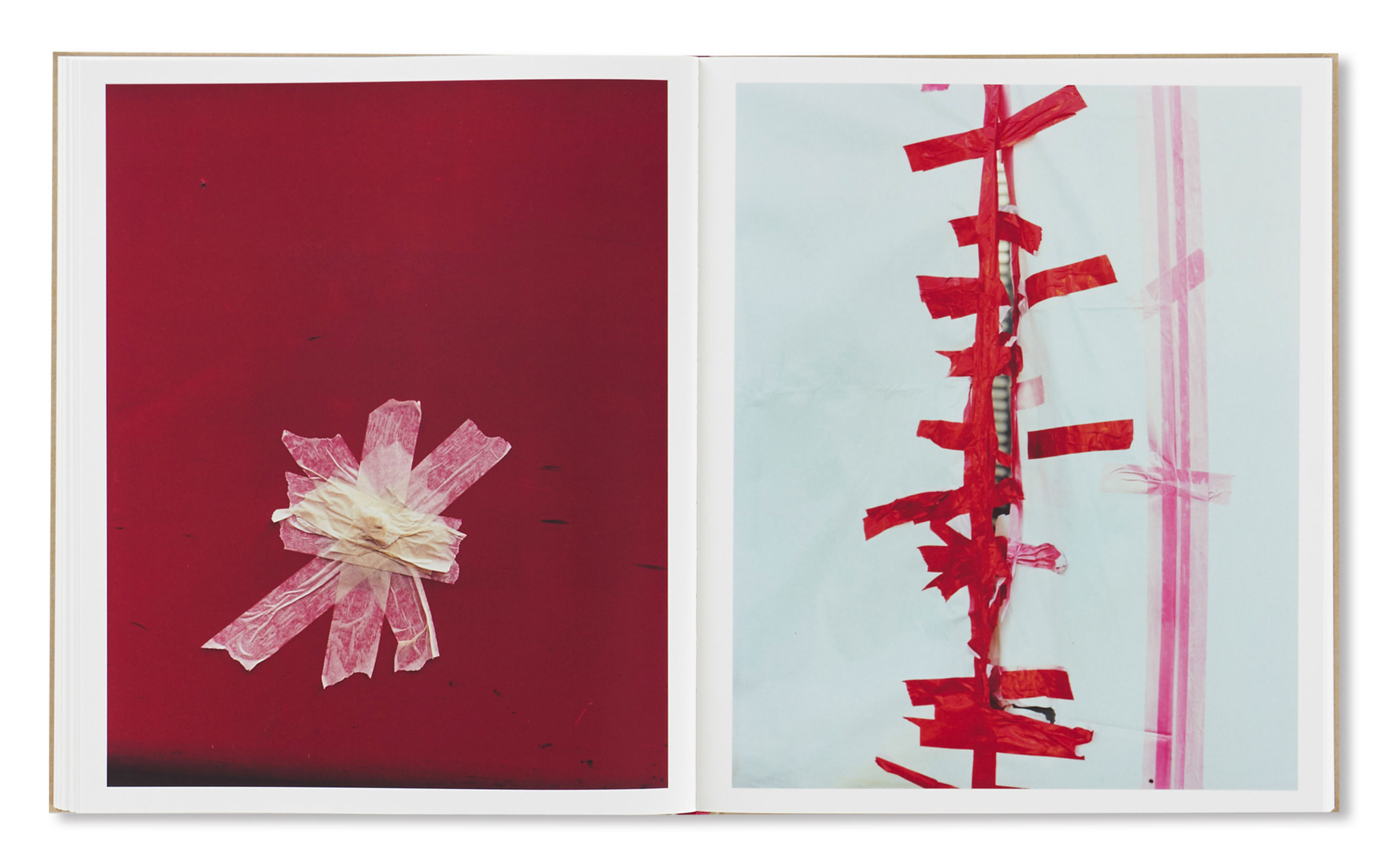 """Harley Weir  Publishes Photo Book """"PAINTINGS"""""""