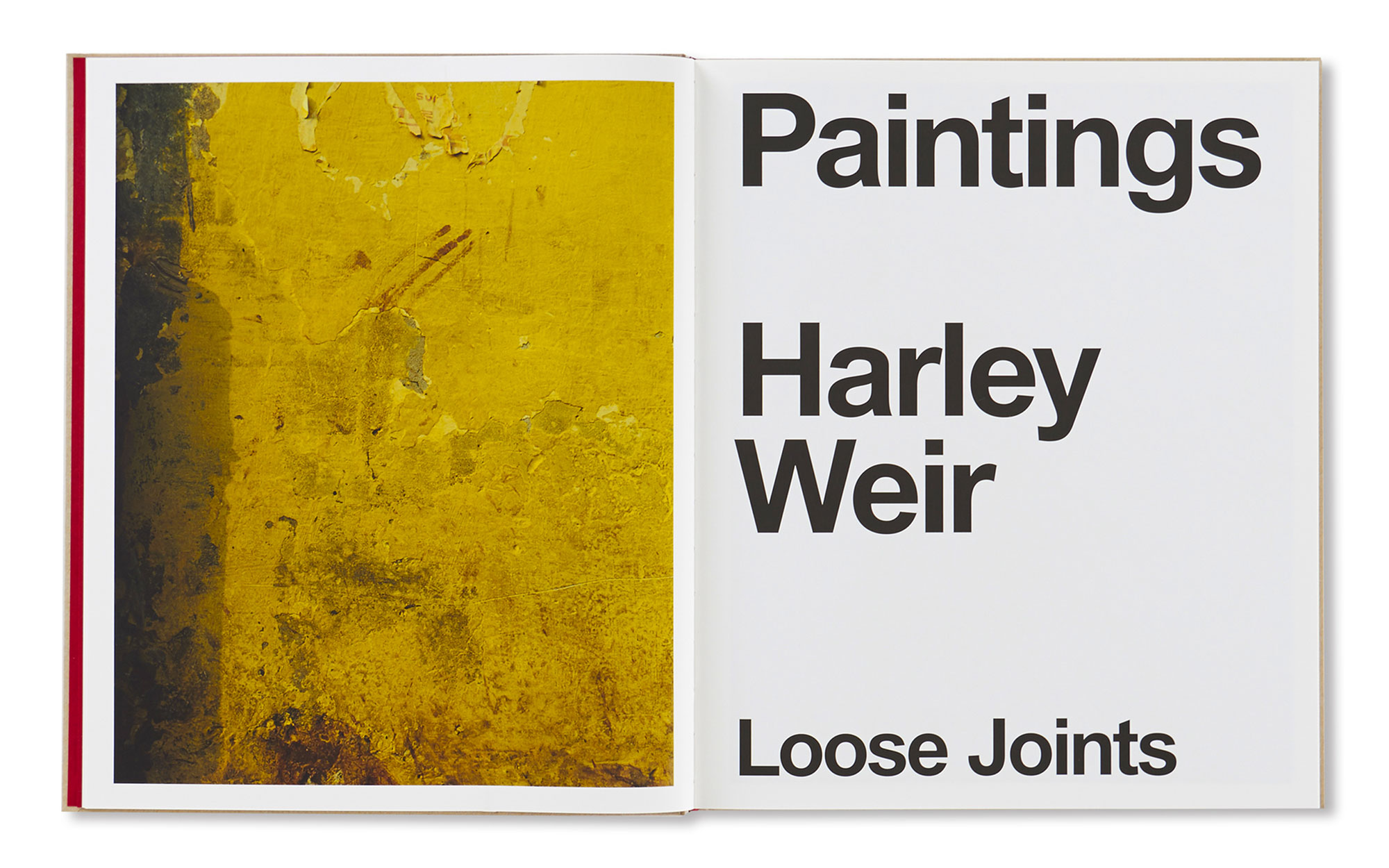 『PAINTINGS』by Harley Weir ¥7,000