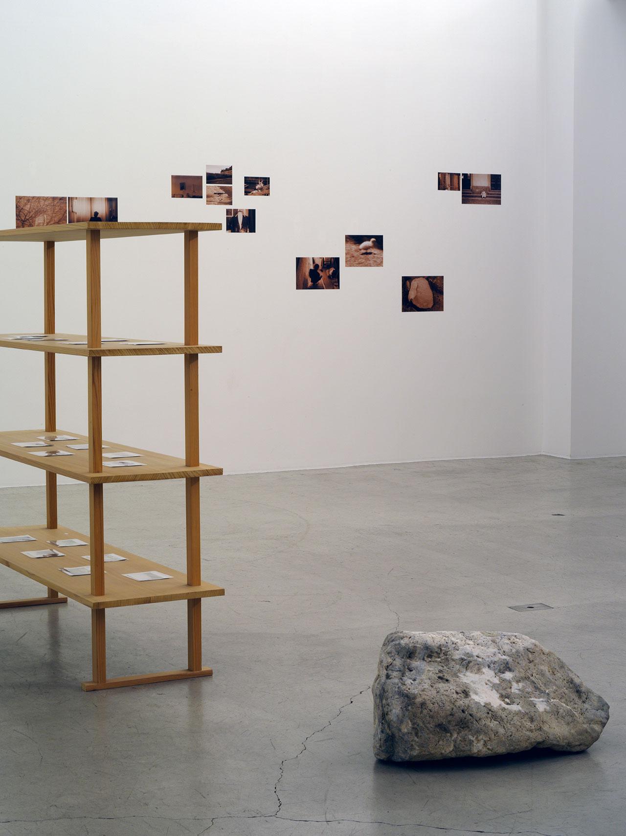 エレン・フライス「Disappearing」展   Photo by Chikashi Suzuki