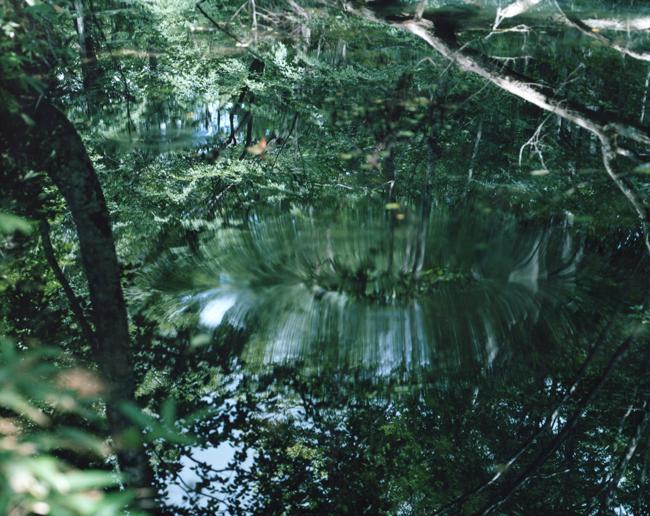 鈴木理策の約8年ぶりとなる大規模個展「意識の流れ」が開催。未発表作、新作を含めた約100点、映像作品も公開
