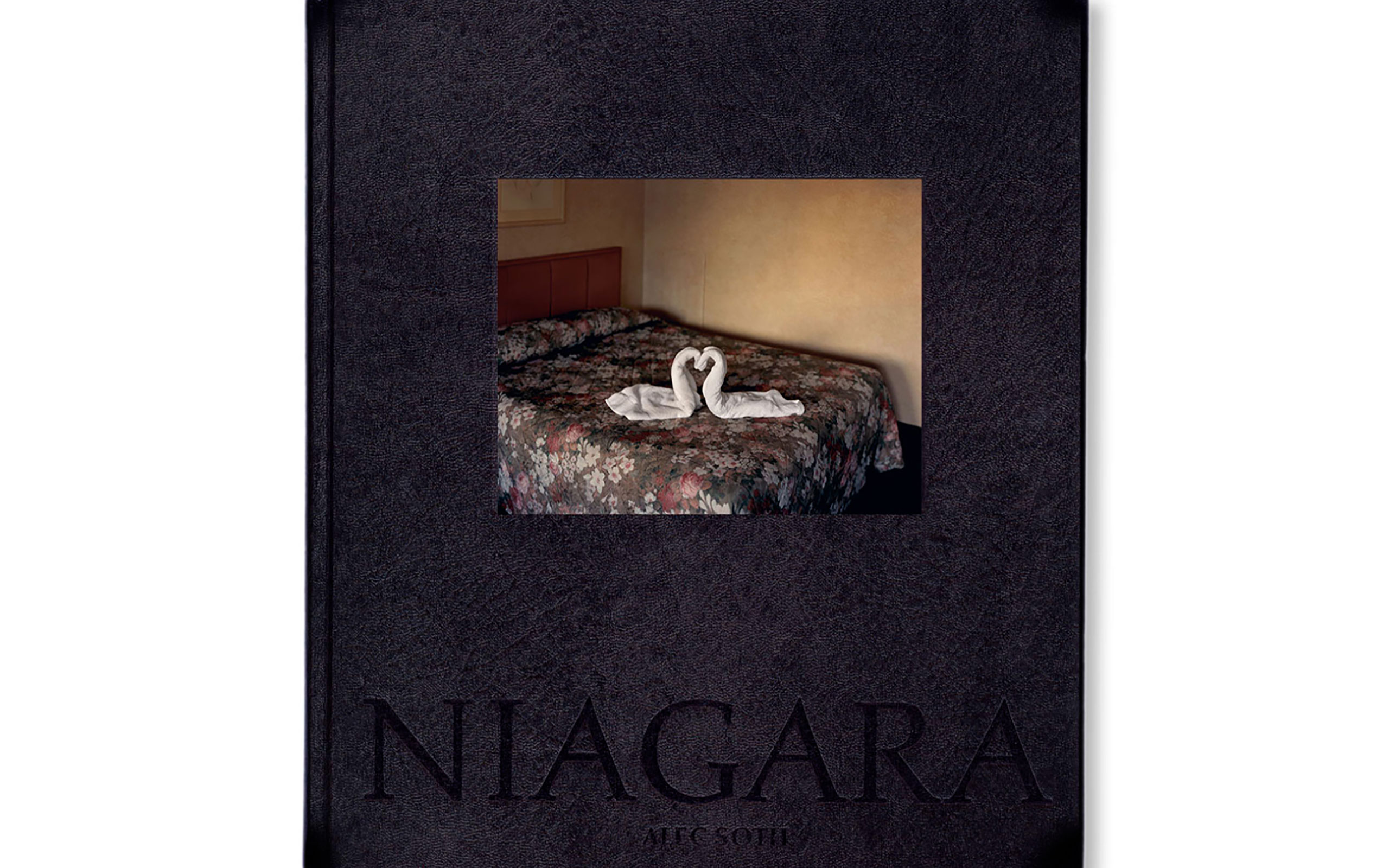 "Alec Soth's ""NIAGARA"" To Be ReIssued"