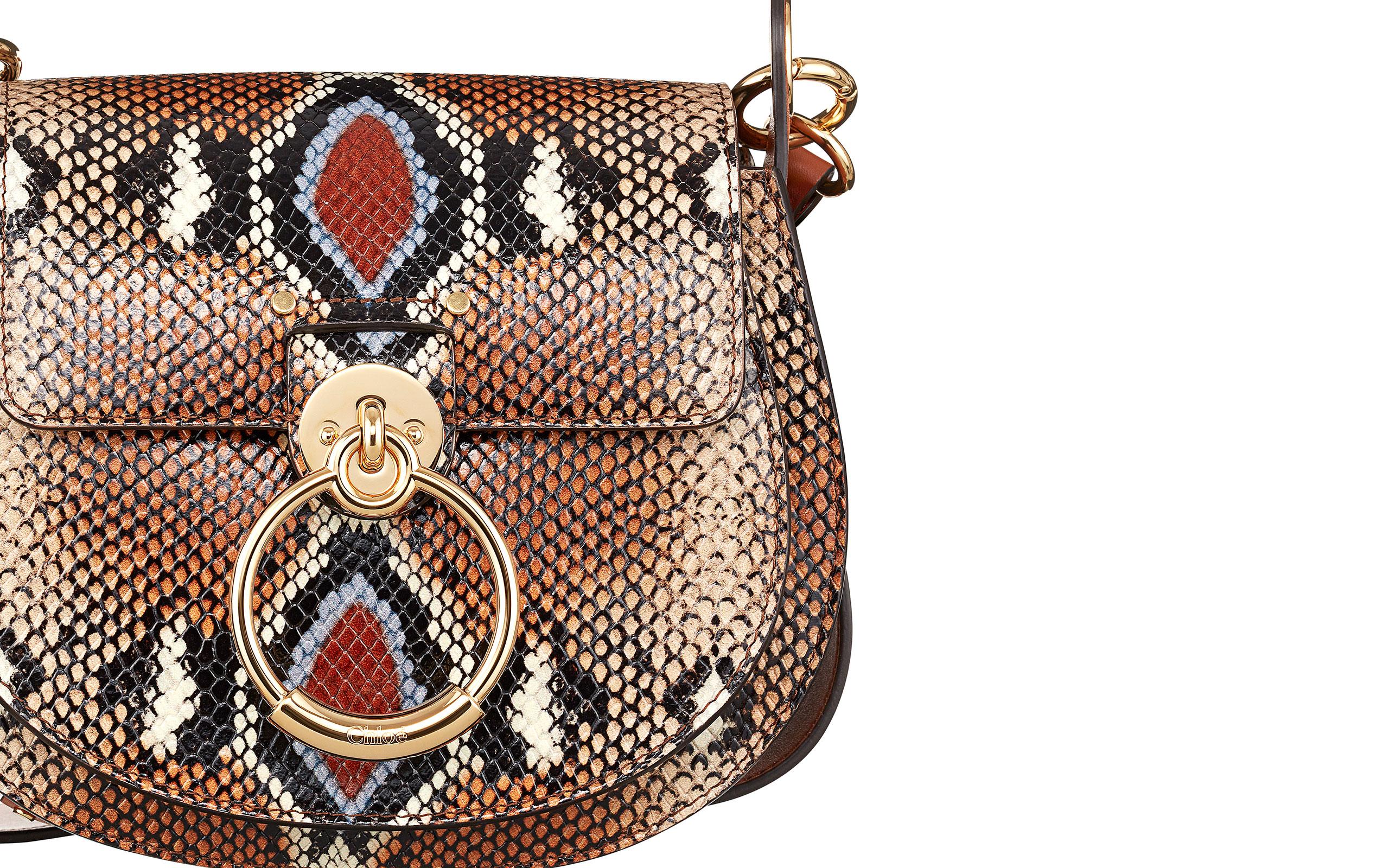 "Chloé Introduces New Bag ""TESS"""