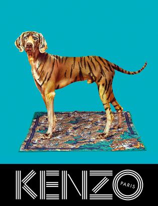 KENZO FW13 Campaign