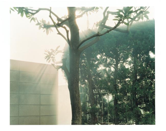 © Yuji Hamada, Courtasy of Photo Gallery International