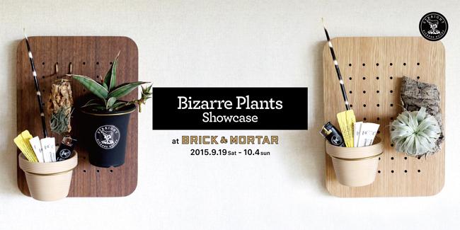 Bizarre Plants Showcase