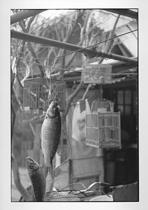 「北京」 1999 ©Kazuo Kitai