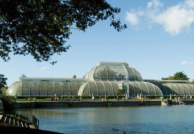 キュー王立植物園のパーム・ハウス © The Board of Trustees of the Royal Botanic Gardens, Kew