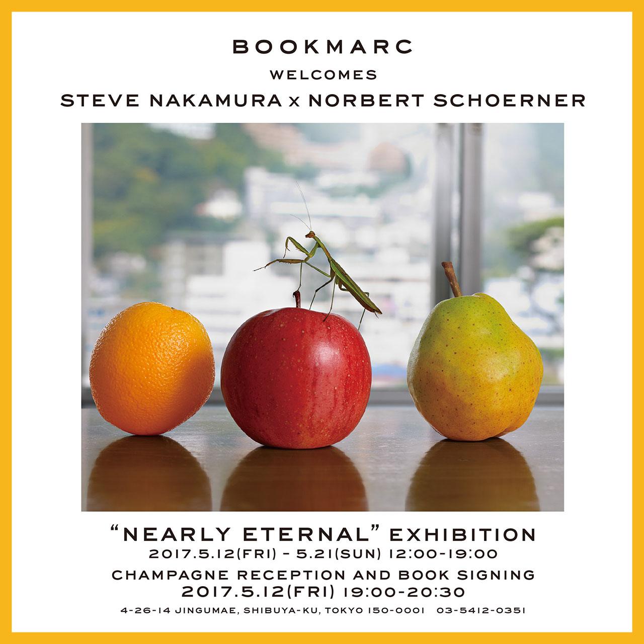 Steve Nakamura & Norbert Schoerner: NEARLY ETERNAL