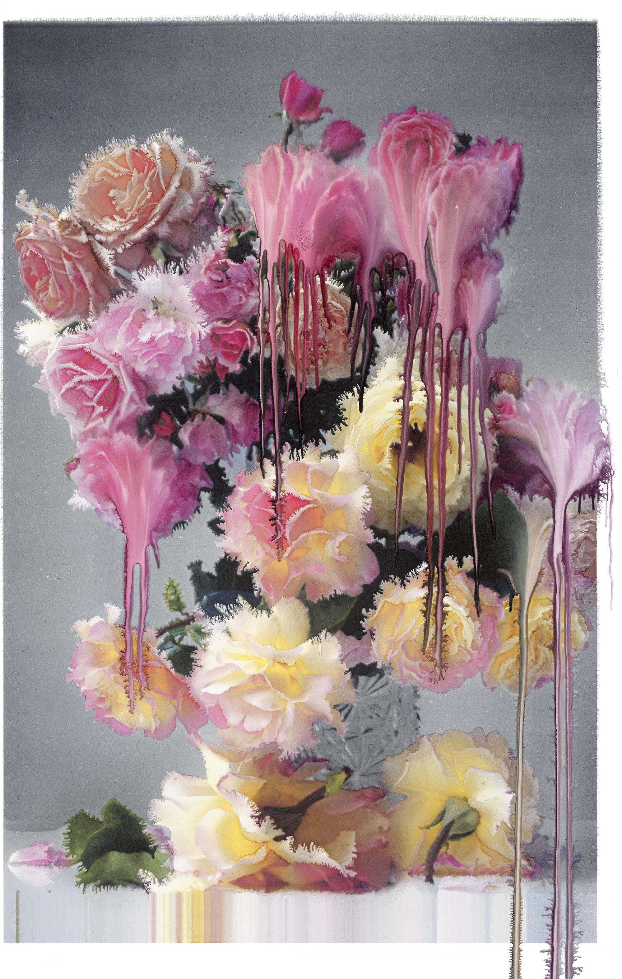 © Nick Knight, Rose I, 2012 (117.47 x 76.2 cm)