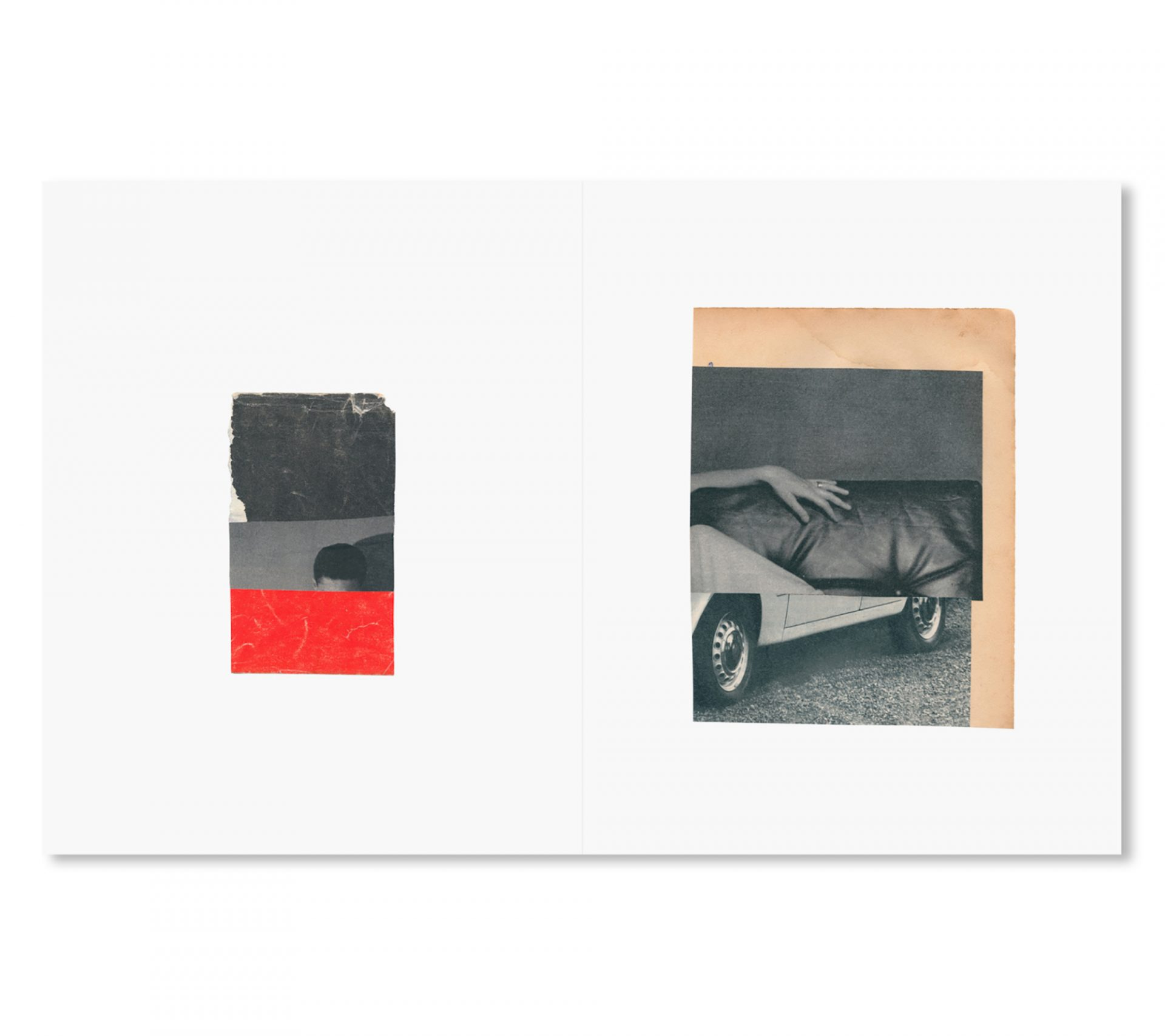 Katrien De Blauwer 「WHY I HATE CARS」